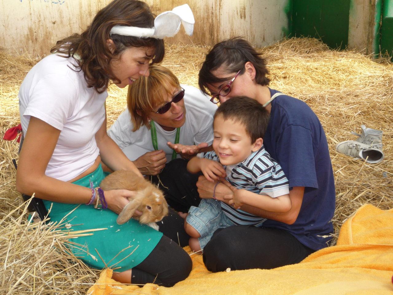 Il contatto con gli animali
